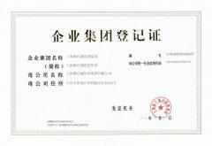 淞江集团企业集团登记证书